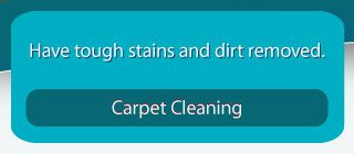 Carpet Cleaning Have tough stains and dirt removed.